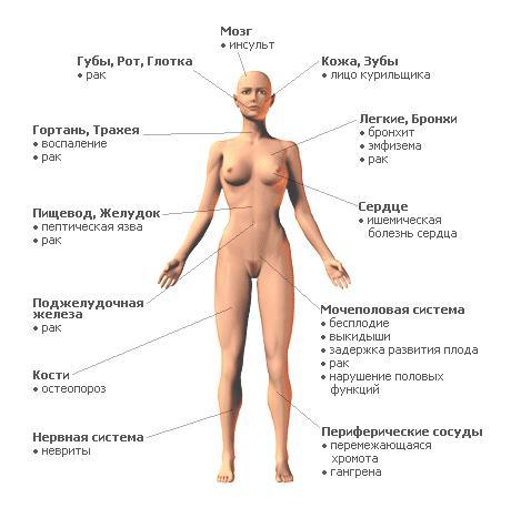deystvie-muzhskoy-spermi-na-zhenskiy-organizm