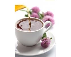 Разные виды чая и их полезные свойства