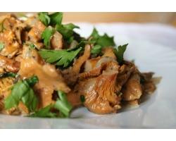 Рецепты блюд из замороженных грибов