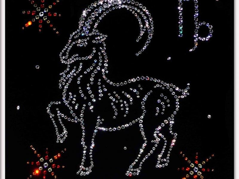 гороскоп козерога в 2011 году