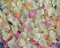 Для чего можно использовать лепестки роз