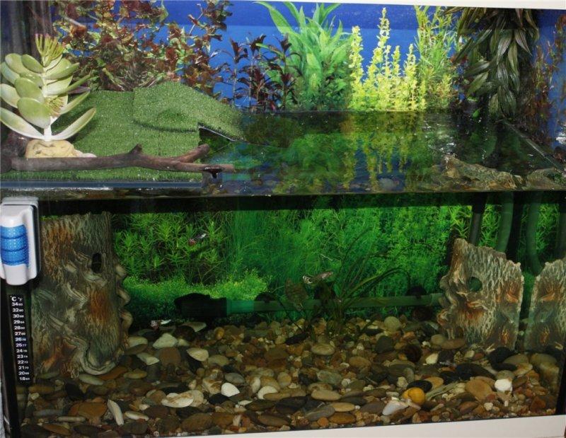 Крышка в аквариум своими руками