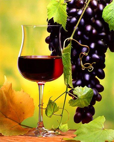 Сухие виноградные вины в домашних условиях