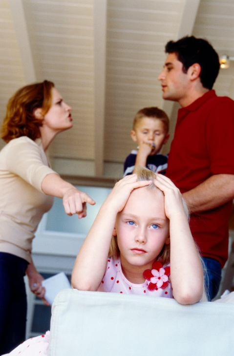 essays family conflicts Family conflicts there are a lot of things that could cause conflict among a family some like jealousy, infidelity, and the way you were raised.