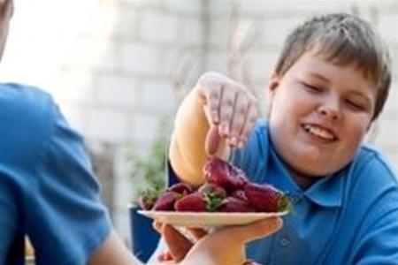 Если кушать и вызывать рвоту можно похудеть