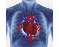 Ощущение сильного сердцебиения