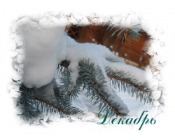 Народные приметы декабря