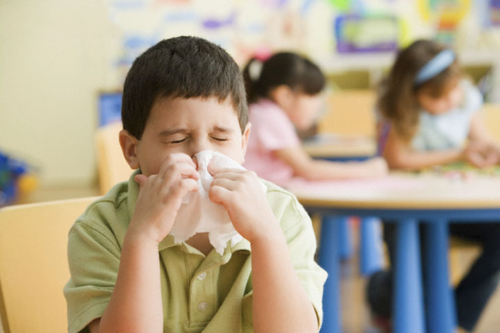 аллергия у кошки на ошейник от блох