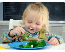 Чем кормить малыша, если он аллергик?