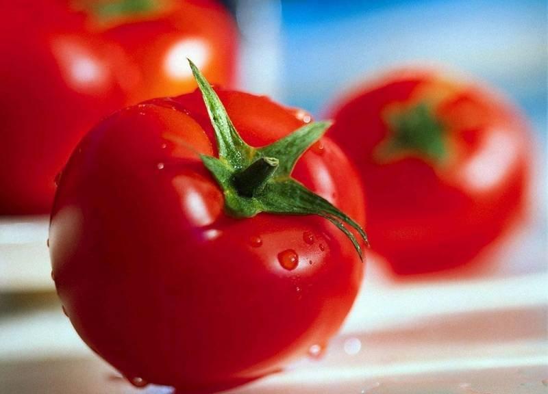 1361729562_svoystva-tomatov.jpg