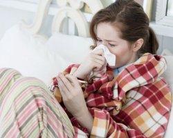 Куриный бульон, мед и лимоны в борьбе с простудой