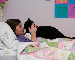 Лечение с помощью животных