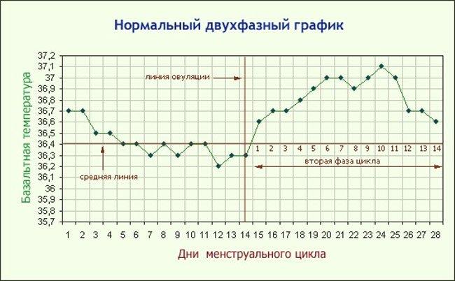 pri-seksualnom-vozbuzhdenii-podnimaetsya-temperatura