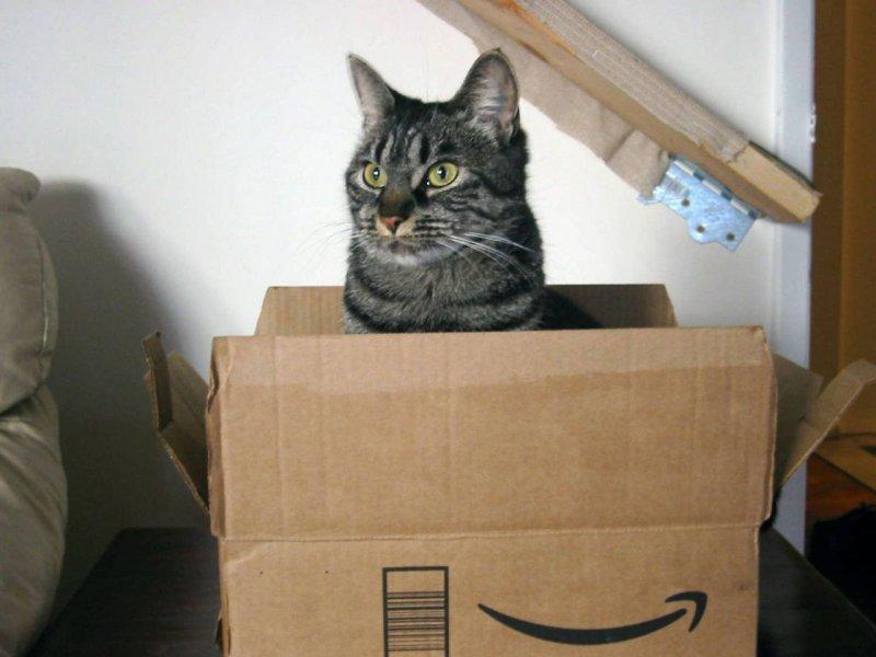 Как сделать коту дом из коробок
