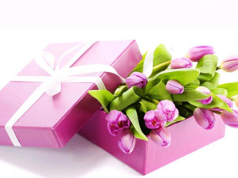 Лучший подарок для женщины на 8 марта кометика где купить подарок мужчине на новый г
