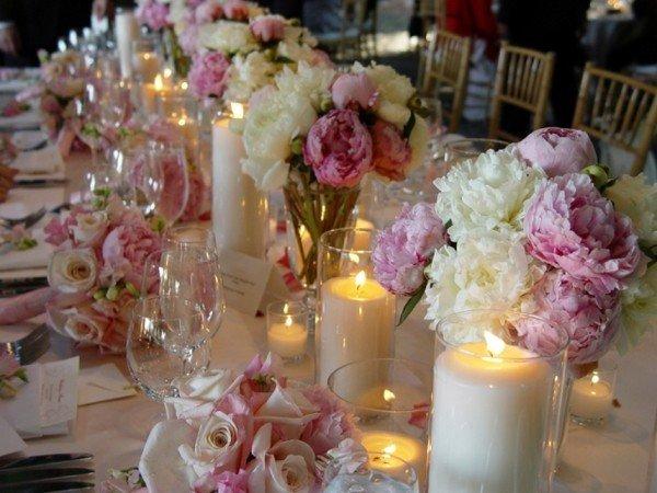 Цветы для клумб каталог фото