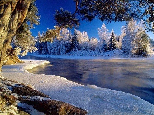 Тамбов зимой картинки