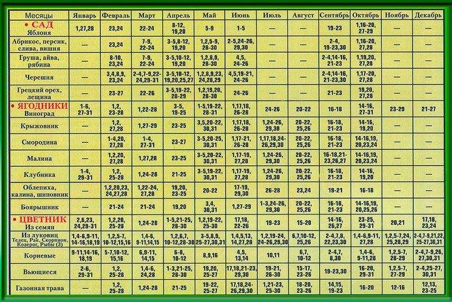 28 лунный день лунный календарь на