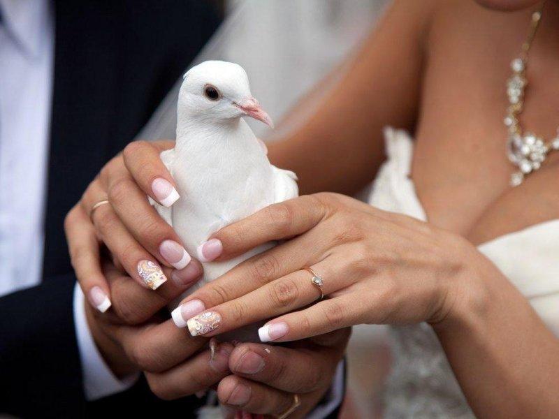 Гелевый маникюр свадебныё фото