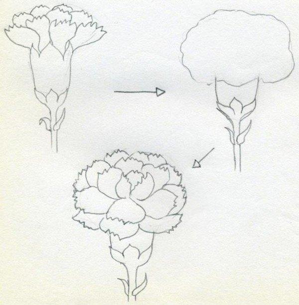 рисунки картинки простые