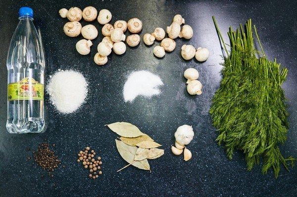 маринование грибов белых в домашних условиях с фото