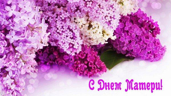 поздравление на день матери в стихах для знакомой