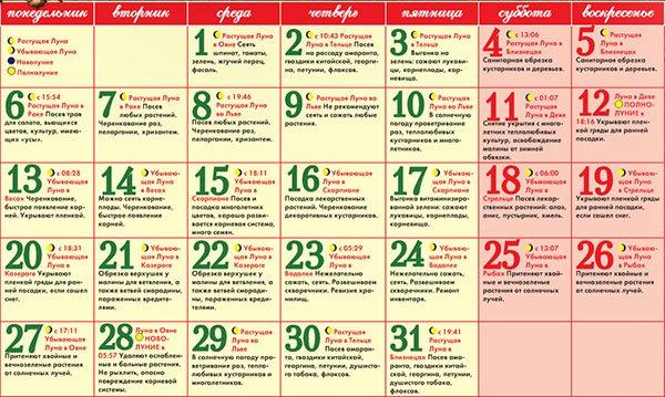 Благоприятные дни для рассады помидоров 61