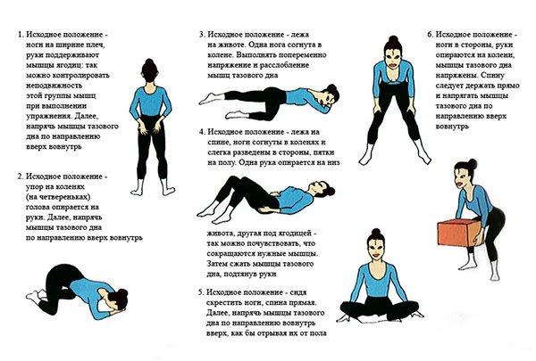 Что такое вумбилдинг, имбилдинг, гимнастика Кегеля, интимный фитнес