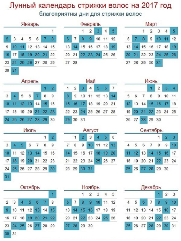 Календарь стрижки - Самое интересное в блогах - LiveInternet