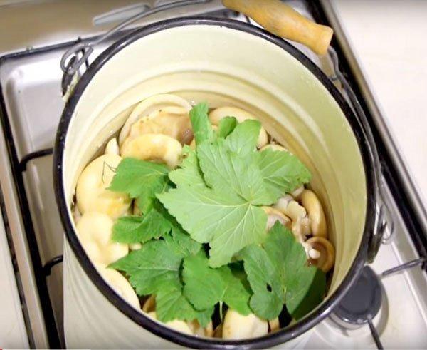 Рецепт супа похудейка
