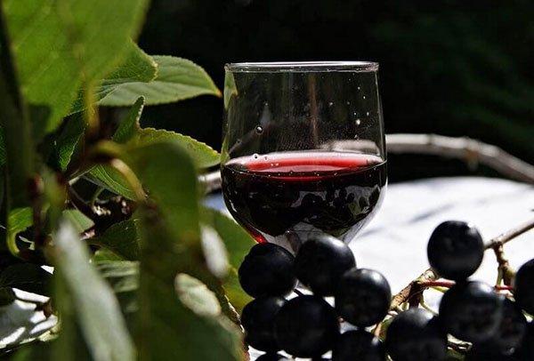Как сделать вино из рябины черной