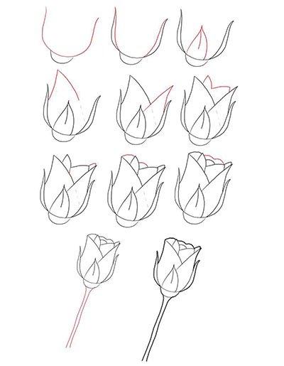 Картинки как рисовать розу