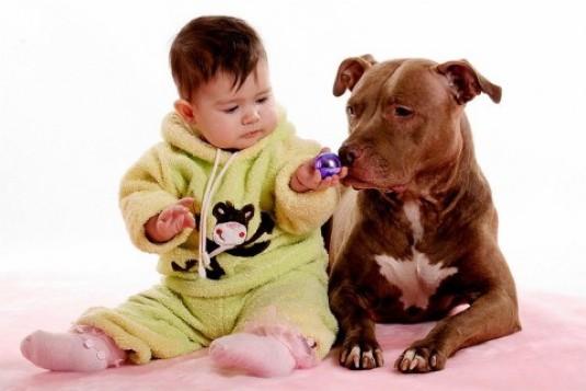 собака для маленького ребенка