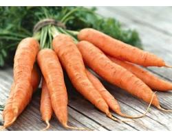 Ценность употребления блюд из моркови при диетическом питании