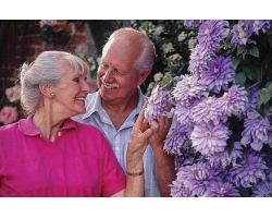 Правильный праздник для пожилых людей