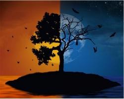 Жизнь, смерть и смысл жизни человека