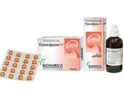 Таблетки канефрон: применение и противопоказание