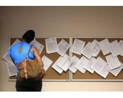 Поиск работы в государственной организации