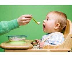 С какого овощного пюре начинать прикорм малыша?