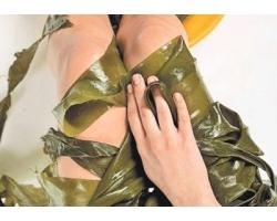 Антицеллюлитное обертывание водорослями