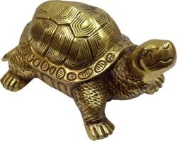Что значит черепаха по фен-шуй