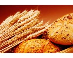Примерное меню хлебной диеты