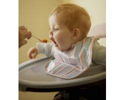Сроки введения прикорма
