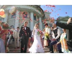 Как весело провести свадьбу?