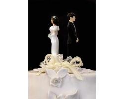 Мотивы развода и повод к разводу