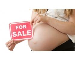 Программа суррогатного материнства