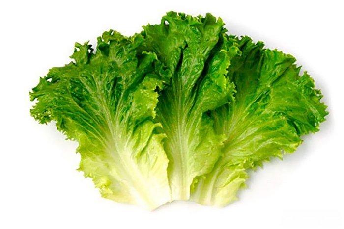"""Результат пошуку зображень за запитом """"3 листа салата-латука"""""""