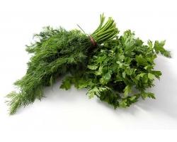 Зелень в питании ребенка