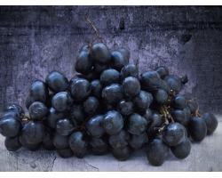 Использование винотерапии и винограда в косметологии