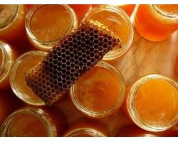 Применение прополиса и других продуктов пчеловодства при беременности